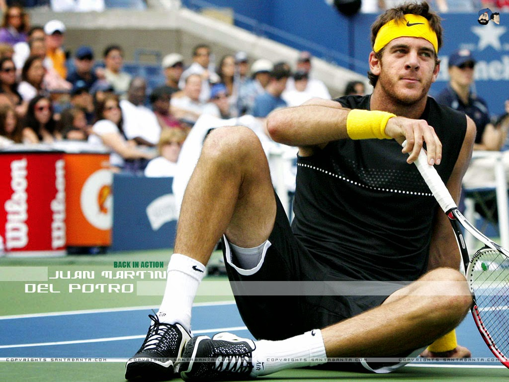 Injured Del Potro Exits Australian Open